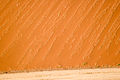 Dune Detail (3687290151).jpg