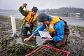 EPA scientists surveying aquatic life. 2009, OR. Credit USEPA (14594912674).jpg