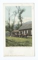 Eagle's Nest Station, Santa Catalina Island, Calif (NYPL b12647398-62089).tiff