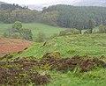 Earthworks, near Dallick - geograph.org.uk - 433605.jpg