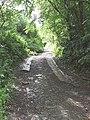 Edbrooke Hill - geograph.org.uk - 455340.jpg