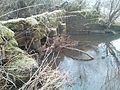 Eel trap River Trent.jpg