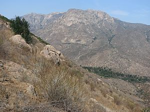 El Cajon Mountain - panoramio.jpg