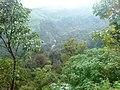 Elapara View Point - panoramio (1).jpg