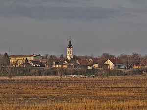 Elemir - Image: Elemir landscape 001
