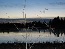 Elk Island.jpg