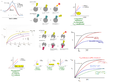 Enzyme inhibition plots and details from my lecture.png