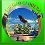 Escudo Curillo.jpg