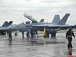 Esquadrilha da Fumaça 60 anos - Pirassununga - US NAVY F-A-18 - Super Hornet - panoramio (5).jpg