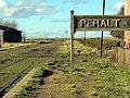 Estación Peralta - panoramio.jpg