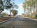 Estrada ao lado do zoologico - panoramio.jpg
