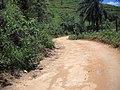Estrada do Chapéu do Sol ^ - panoramio (1).jpg