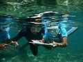 Exploration du récif coralien de l'Aire marine éducative de Saint-Leu.jpg