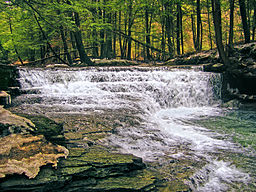 Fall Brook, Salt Springs State Park, Susquehanna County, Pennsylvania (16 March 2008).jpg