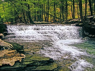 Franklin Township, Susquehanna County, Pennsylvania - Waterfall at Salt Springs State Park