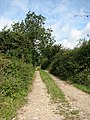 Farm track - geograph.org.uk - 543275.jpg