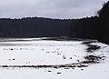 Felder nordöstlich Schongau Dezember 2013.jpg
