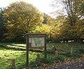 Fen Alder Carr local nature reserve - geograph.org.uk - 597915.jpg