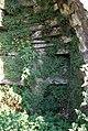 Ferns growing inside old lime kiln - geograph.org.uk - 577886.jpg