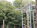 Ferny Crofts High Ropes.jpg