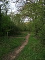 Fetcham Common Lane - geograph.org.uk - 779338.jpg