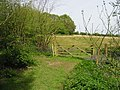 Field entrance from Brick Kiln Wood, Hole Park - geograph.org.uk - 787586.jpg