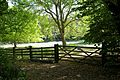 Field gate and fence at Monkton Kent England.jpg