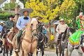 Fiestas Patrias Parade, South Park, Seattle, 2015 - 300 - the horses (20971222594).jpg