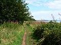 Fife Coastal Path - geograph.org.uk - 1462780.jpg