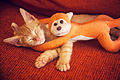 Fiumi y su mascota (8172460459).jpg