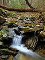 Flickr - Nicholas T - Apollo County Park (5).jpg
