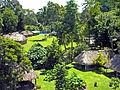 Flickr - archer10 (Dennis) - Belize-1057.jpg