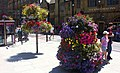 Floral Displays in Bridge Street, Salisbury - geograph.org.uk - 706485.jpg