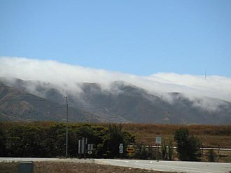 Mission blue butterfly habitat conservation - Fog coming off of San Bruno Mountain