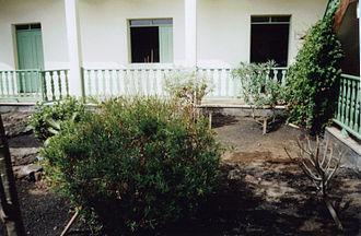 Fogo, Cape Verde - Endemic plants in the garden of the Museu Municipal in São Filipe