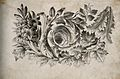 Foliated decoration for a frontispiece to Lavater's 'Essays Wellcome V0009313.jpg