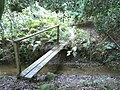 Footbridge over stream - geograph.org.uk - 571118.jpg