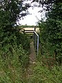 Footpath Bridge - geograph.org.uk - 890133.jpg
