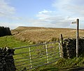 Footpath from cattle grid on Long Causeway - geograph.org.uk - 1580933.jpg