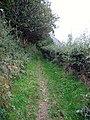 Footpath leaving High Swinside - geograph.org.uk - 1512695.jpg