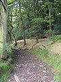 Footpath off Huddersfield Road, South Crosland - geograph.org.uk - 499886.jpg