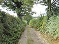 Footpath south of Byne's Farm - geograph.org.uk - 1485596.jpg