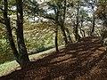 Footpath to Boytonbridge - geograph.org.uk - 610165.jpg