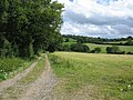 Footpath to Shaftesbury - geograph.org.uk - 523909.jpg