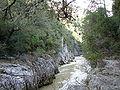 Foz de Arbayún río.jpg