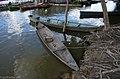 Foz do Rio Jamari (7524811528).jpg