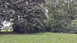 Friedhorstpark 20160619.jpg