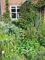 Front garden - Flickr - peganum (5).jpg