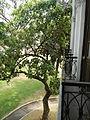 FvfMalacanangMuseum9999 34.JPG