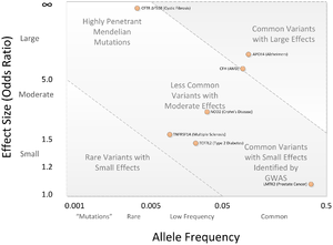 Genome-wide association study - Image: GWAS Disease allele effects